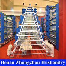 chinese bird cage/floor and eggs/environmental control poultry house