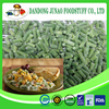 Cleaned vegetable frozen green bean for cooking