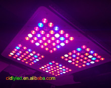 Cidly new 5w grow light model, 144X5W 600W led square grow panel tent growing lamp, high PAR value led grow lights