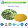 Barosma Betulina extract Powder