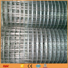 Galvanized Welded Wire Mesh For Sale