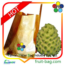 Taiwan factory fruit cover growing bag shakya bag sugarapple bag