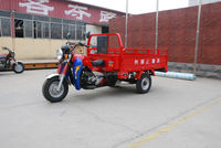 petrol engine tricycle for passenger or cargo