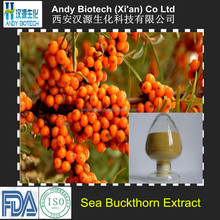 Professional Manufacturer Sea Buckthorn Extract Powder
