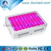 Hydroponic Grow Tent 300W Full Spectrum LED Grow Light Europe 380nm-850nm for Blooming Leave Growth