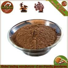 Orgánica ganoderma lúcido extrae powder