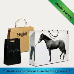 2014 Hot sale elegant popular shopping paper bag for cloth/unique style pop shopping bag
