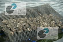 5x5 mm Zapco Aquaculture oyster mesh bag HDPE Material