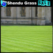 grass synthetics turf for garden and outdoor landscape