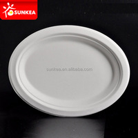 100% Environment-friendly Biodegradable Pulp Plate made of sugarcane bagasse