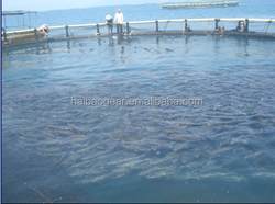 HDPE/PE Fishing Net Cage/Floating Fish farming Cage in open occean