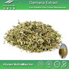 Damiana Extract,Damiana Extract Powder,Damiana Leaf Extract Supplier