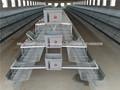 meilleur prix batterie poules pondeuses cages, cage délevage de poulets pondeuse WQ-A-101