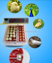 two years warranty 144 egg incubator for quail
