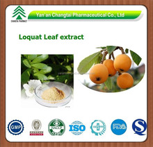 GMP factory supply Goods in stock hot sale Loquat Leaf P.E.