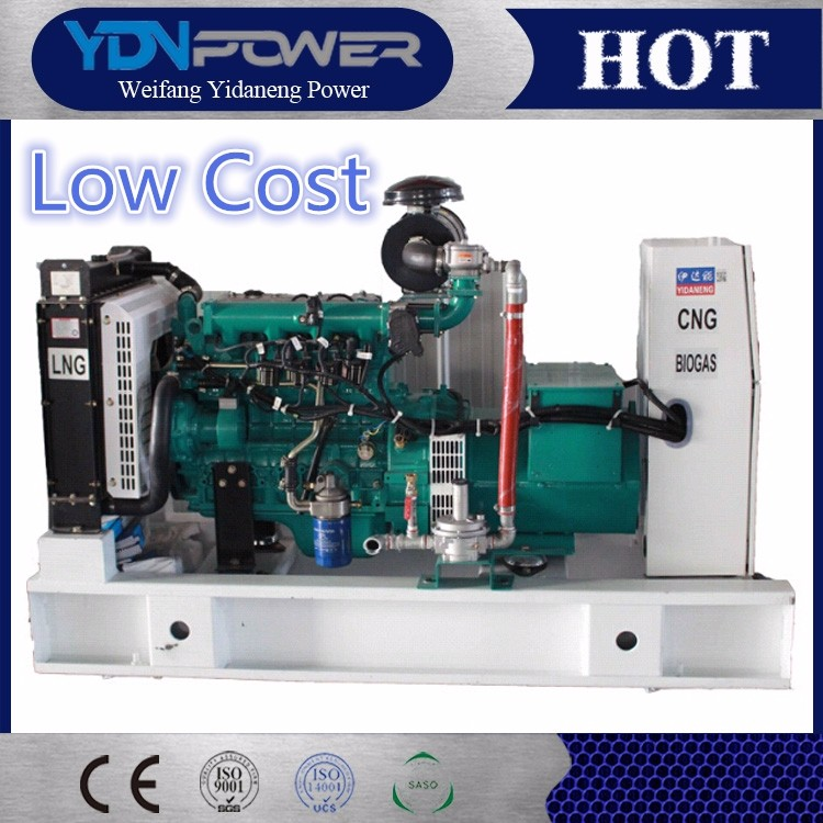 CNG biogas yangdong (3)
