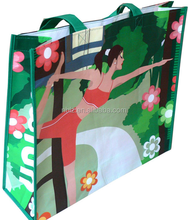 Reusable Eco woven PP laminated Shopping bag promotional