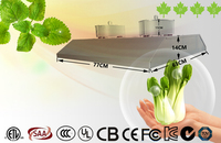 XPES Greenhouse Indoor LVD Induction Grow Light hid kit supplier in foshan
