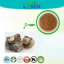 Fomes officinalis extract Triterpene