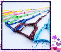 2015 New Design Nylon Braided Pet Leashes And Dog Collar For Wholesale