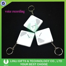 Wholesale Cheap Promotional Mini Voice Recorder Keychain,Keychain Voice Recorder,Custom Sound Keychain With Logo