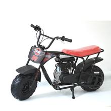 2015 China factory 350W Lowest price two wheel balance mini bike FSD80P