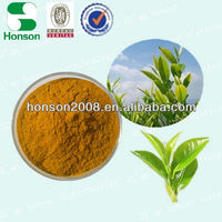 Green Tea Extract Instant tea powder with competitive price CAS No.: 989-51-5