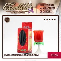 sparkling birthday candles Carrie-0086 15633042031