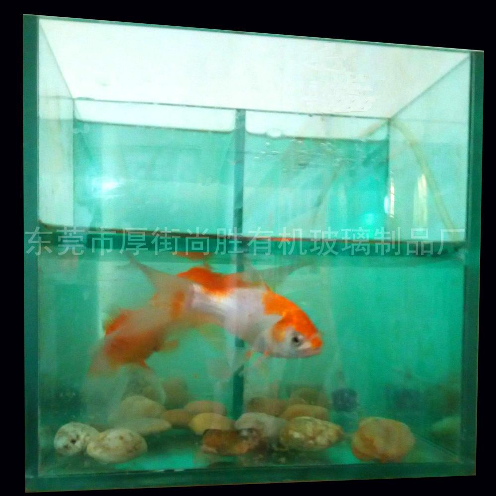 2015 large rectangular acrylic clear fish tank buy fish - Rectangular fish tank sizes ...