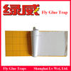 yellow sticky insect traps trap house flies fly glue trap UV light fly glue boards