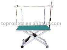 Electric Grooming Table DG56