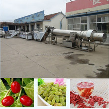 highest quality raisin processing machine