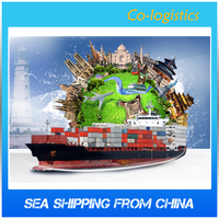 Professional Ship Goods by Sea Freight to Russia Service