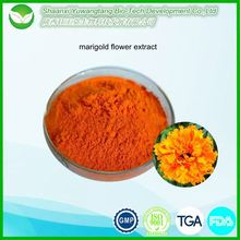 Marigold Flower Extract xanthophyl / Lutein 10% 20% 30%