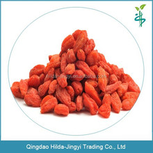2015 hot sell dried ningxia goji berry