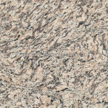 cheap tiger skin white granite of good quality
