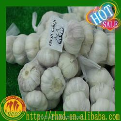 Natural Garlic Wholesale Garlic Price