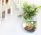 Wall Mounted Acrylic Fish Tank,clear hot sale fish tank