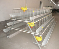 awesome popular used poultry farm cage sale in philippines