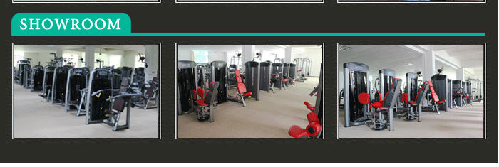 BFT-1009 hammer strength exercise equipment/body fitness equipment/pure strength machine BFT-1009