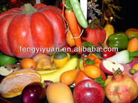 2015 hot selling new style decorative artificial fruits