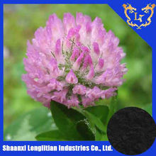ISO&KOSHER Certificated Isoflavone Red Clover Extract