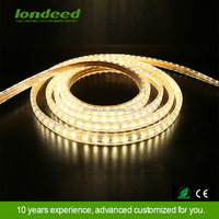 Custom length double sided smd 5050 rgb underwater ip65 flexible led strip lights 220v for decor