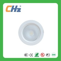 Hot Sell COB LED Down Light With Different Size and Power
