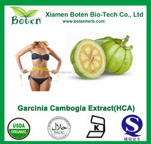 Fat Burner Tablet garcinia fast slim pills for body beauty