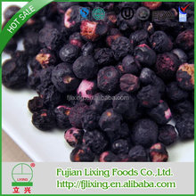 Cheap useful dried fruit bilberry extract