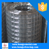 Cheap Galvanized Welded Rabbit Cage Wire Mesh(Anping Factory)