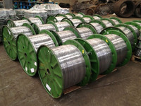A Quality Galvanize Spring Steel Wires high carbon material