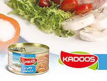 High Quality canned tuna from Iran