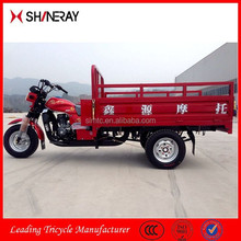 China OEM New Products Motorized Tricycle Bike/Cargo Tricycle Bicycle/Three Wheel Motor Vehicle